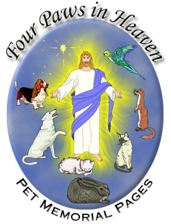 Four Paws in Heaven Logo